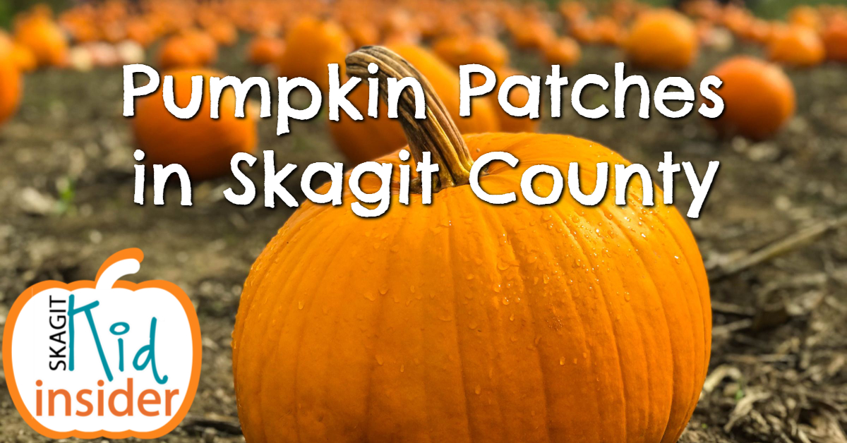 Skagit County Patches